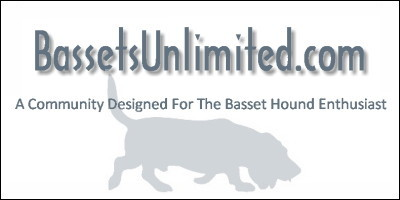 Bassets Unlimited - A Basset Hound Community